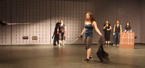 Rapier and Companion Fight, AFDC Nationals